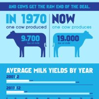 Got milk? You don't need it... - The Meta Picture