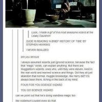 Awesome leaky cauldron science wizard... - The Meta Picture